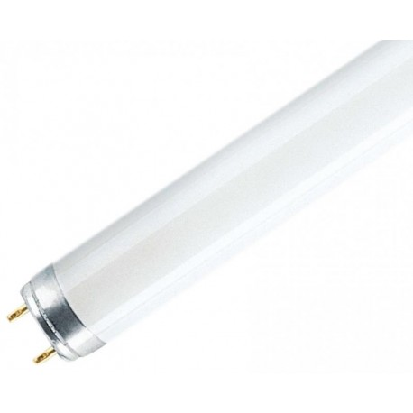 TUB FLUORESCENT 36W/5200K G13 VALUE